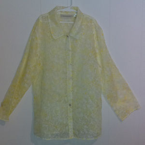 Susan Bristol Sheer Button Down Blouse